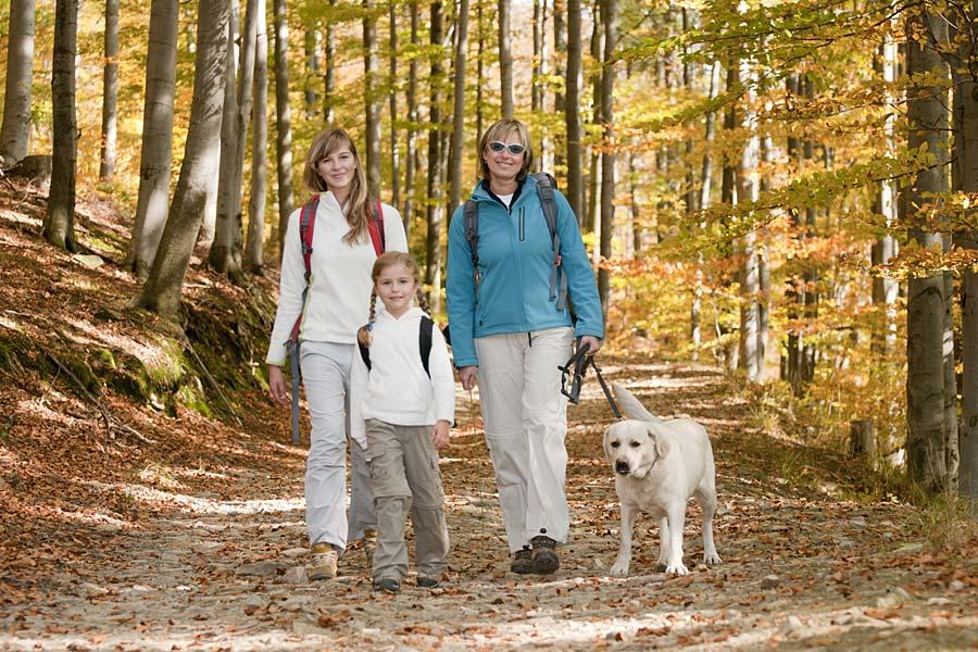 Pension Bayerischer Wald Urlaub in Bayern